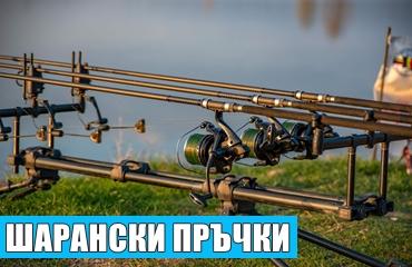 sharanski_prachki